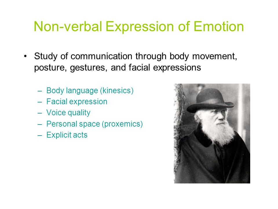 a study of the non verbal behavior in public A case study: understanding non-verbal expressions when  behavior in the learning process non-verbal expressions generated by instructors are linked to learners'.