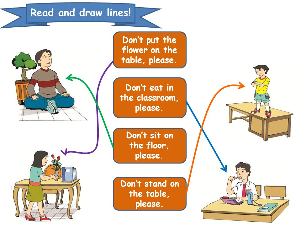 Read and draw lines! Don't put the flower on the table, please.