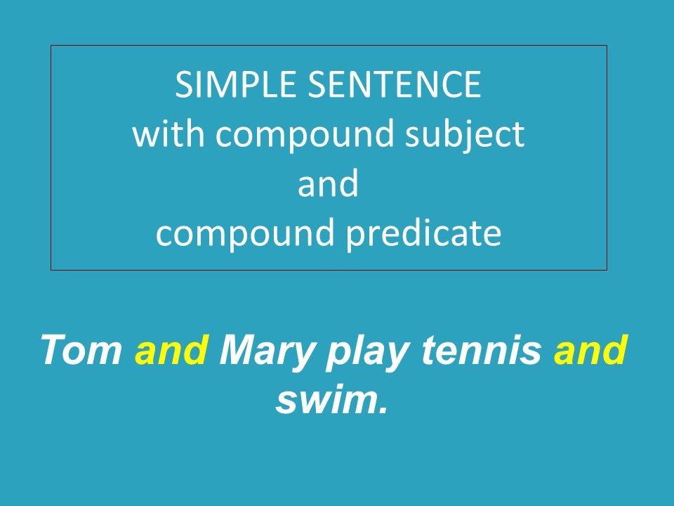 Simple Sentence Examples – Definition & Importance
