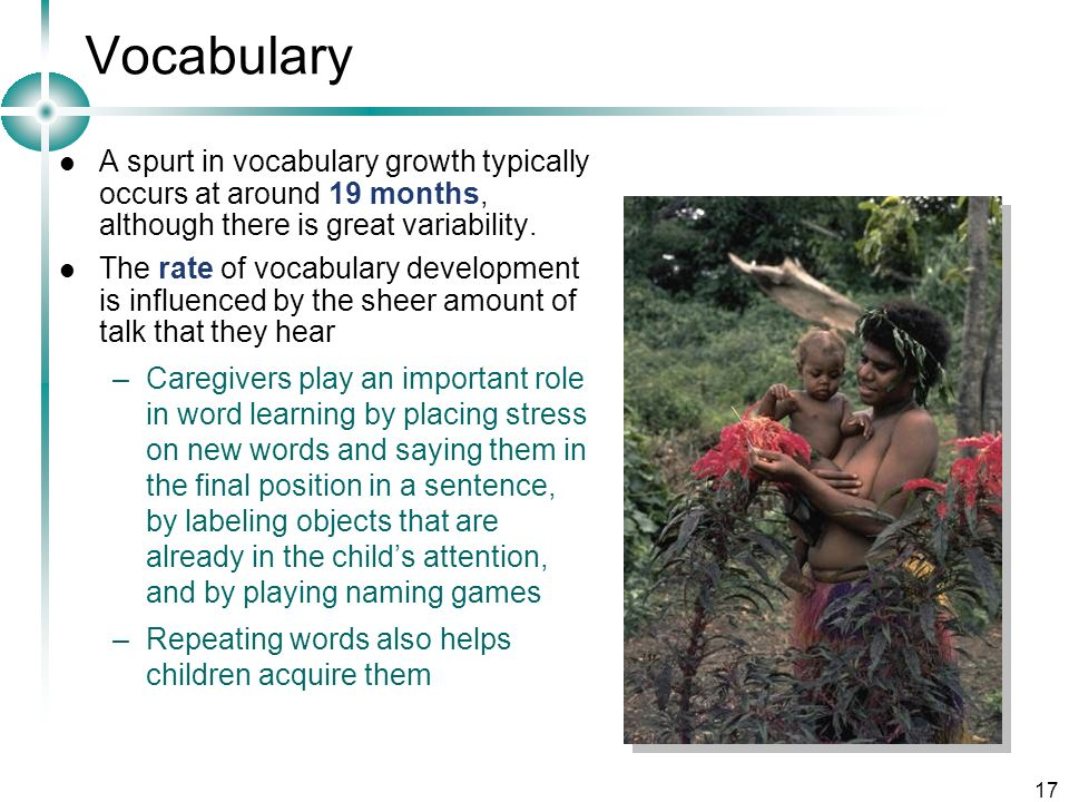 Vocabulary A spurt in vocabulary growth typically occurs at around 19 months, although there is great variability.