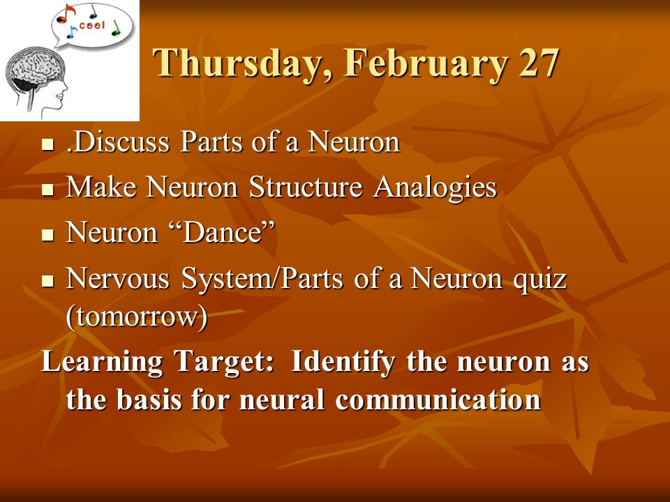 Friday february 28 neural communication quiz on nervous system and parts of a neuron begin discussing parts of the brain learning targets identify the discuss parts of a neuron ccuart Images