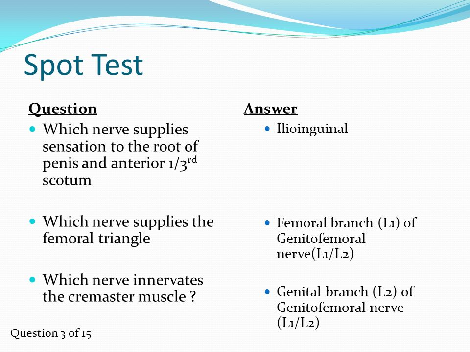 Spot Test Question. Which nerve supplies sensation to the root of penis and anterior 1/3rd scotum.