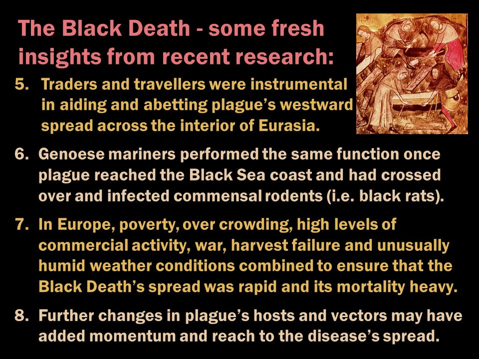 a research on the black death of europe Discover librarian-selected research resources on black death (black plague) from the questia online library, including full-text online books, academic journals, magazines, newspapers and more  librarian's tip: chap 5 the black death and the spread of europe read preview overview.