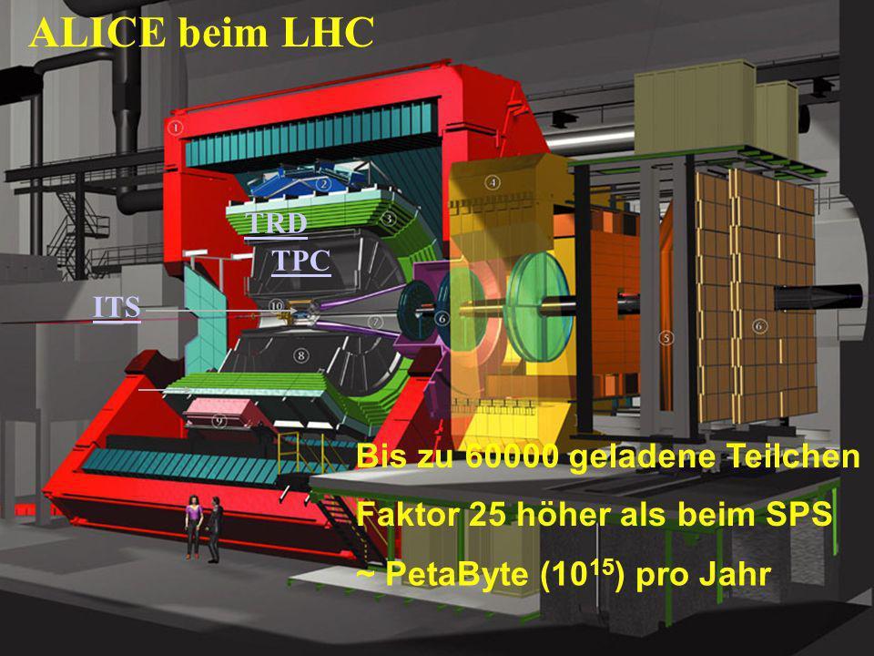 ALICE beim LHC Bis zu 60000 geladene Teilchen