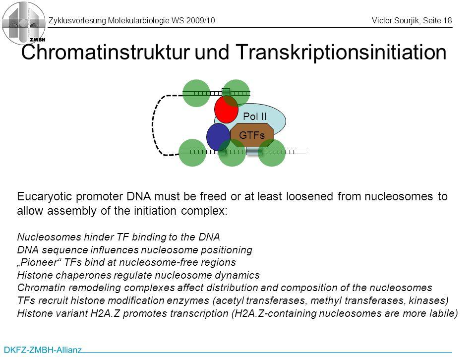 Chromatinstruktur und Transkriptionsinitiation