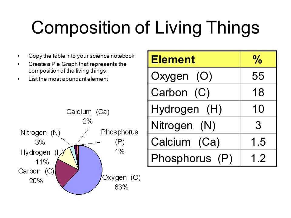A look at the most abundant elements in living organisms