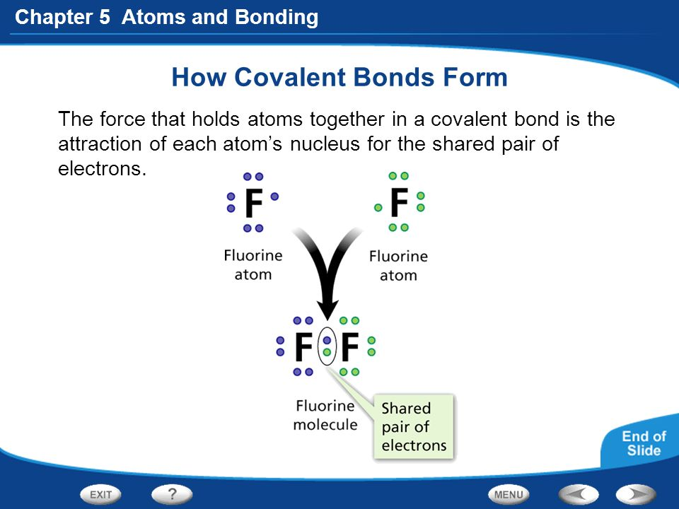 Section 3: Covalent Bonds - ppt video online download
