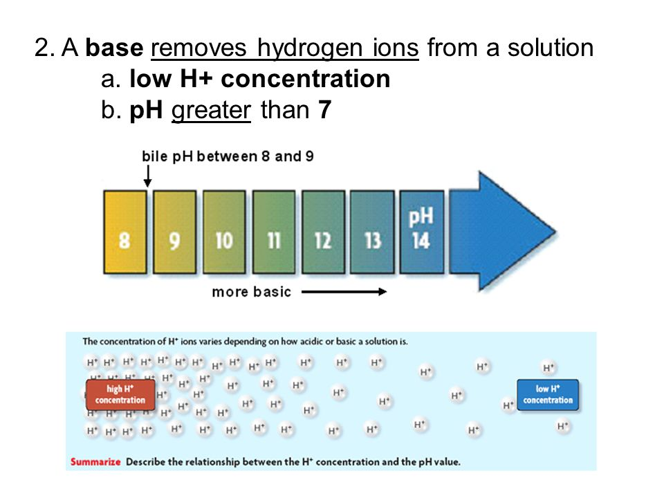 2. A base removes hydrogen ions from a solution. a