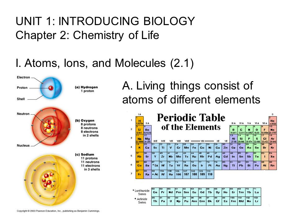 UNIT 1: INTRODUCING BIOLOGY