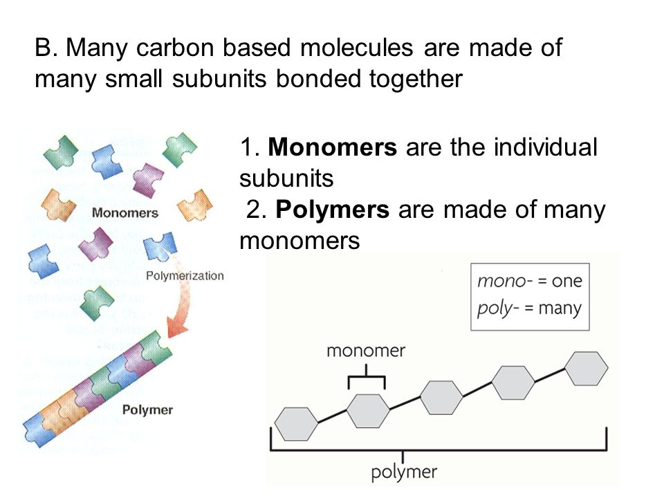 1. Monomers are the individual subunits