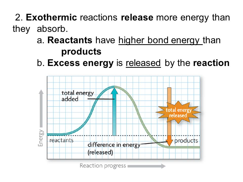 2. Exothermic reactions release more energy than they absorb.