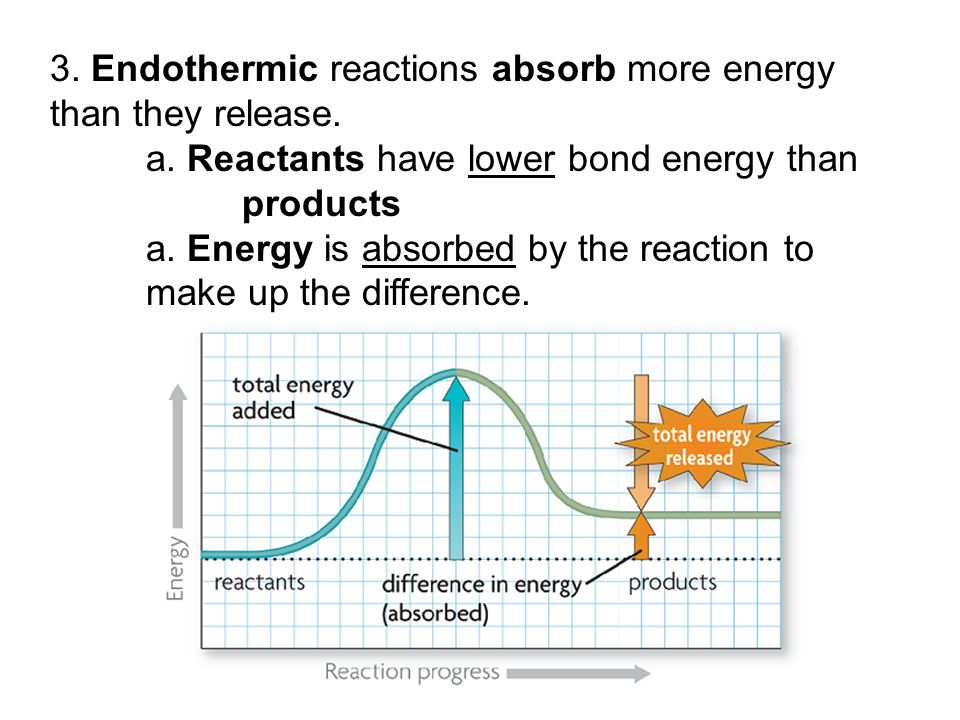 3. Endothermic reactions absorb more energy than they release.