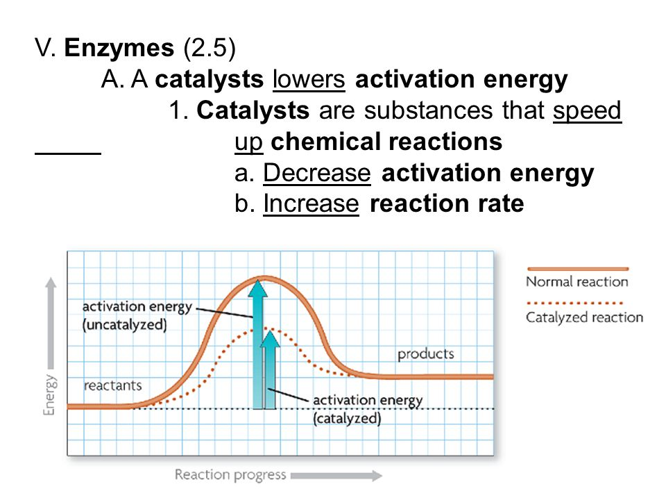 A. A catalysts lowers activation energy