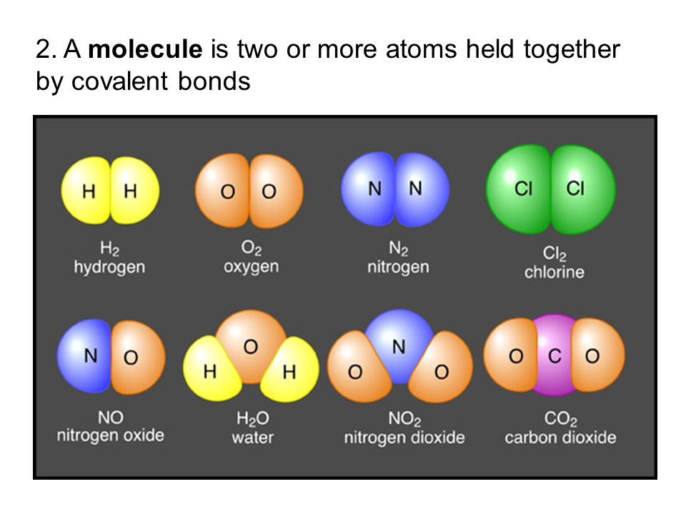 2. A molecule is two or more atoms held together by covalent bonds