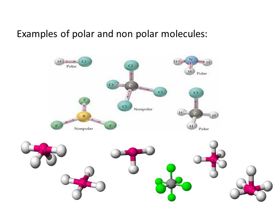 Examples of polar and non polar molecules: