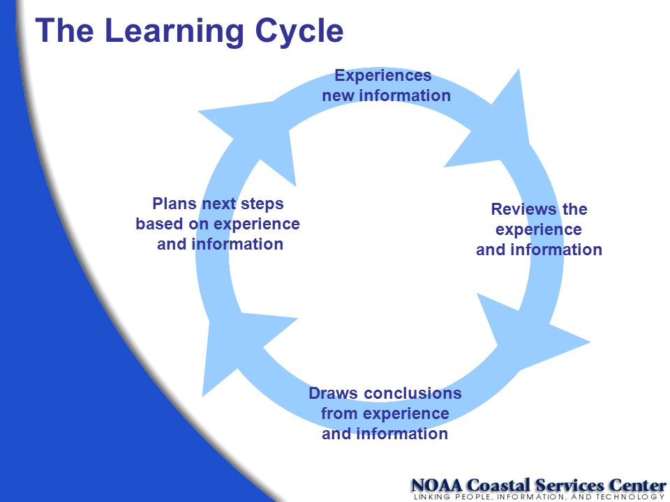 The Learning Cycle Experiences new information Plans next steps