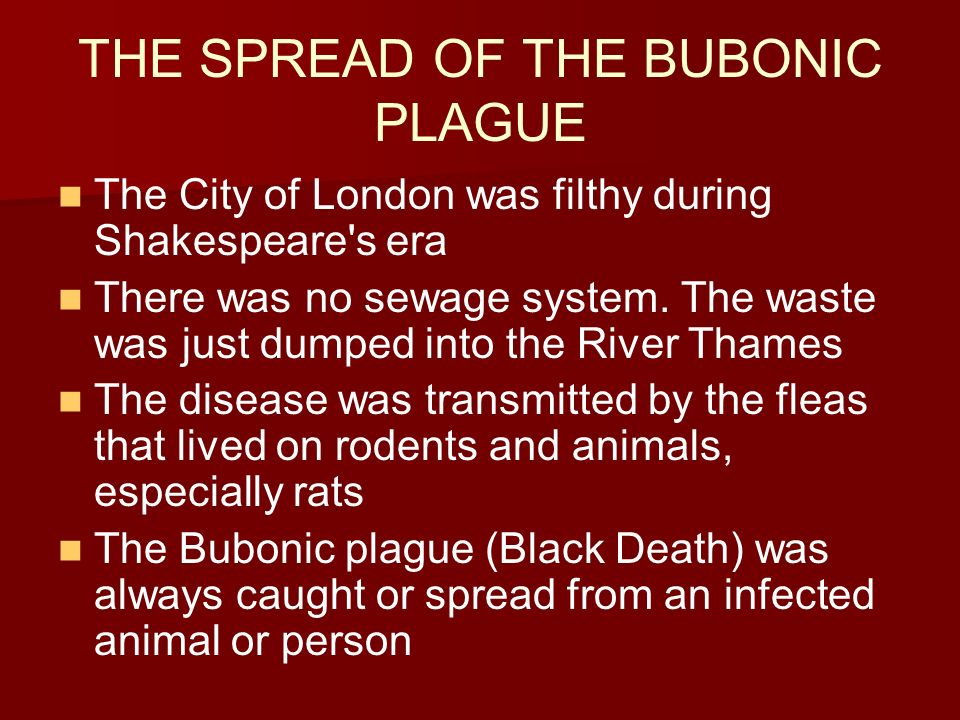 shakespeare and the bubonic plague Any victim of the bubonic plague or black death would have to obtain a ' certificate of health ' to resume normal life - if they recovered taken from william-shakespeareinfo (2016).