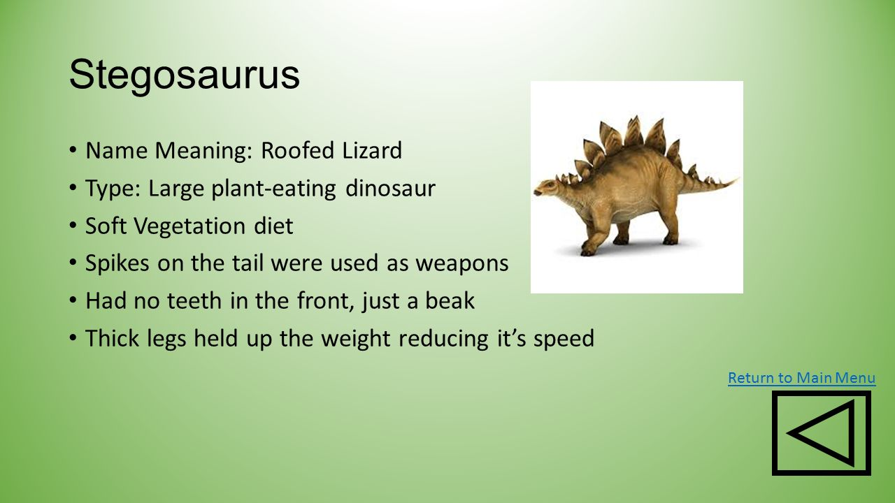 2nd Grade Science Colleen Smith Ppt Download