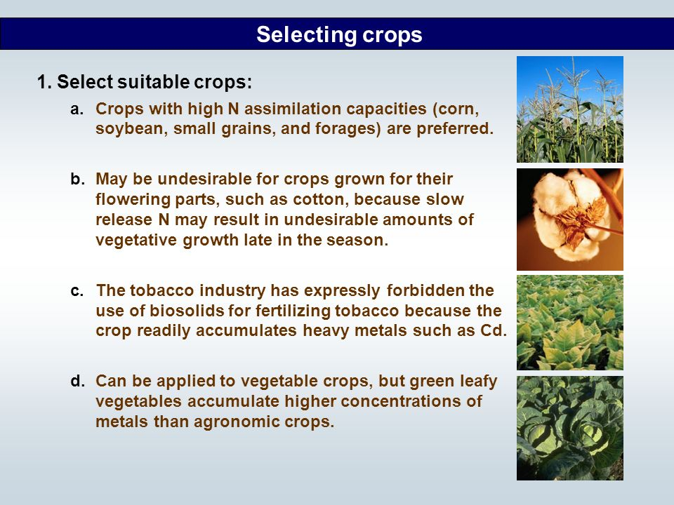 Selecting crops 1. Select suitable crops: