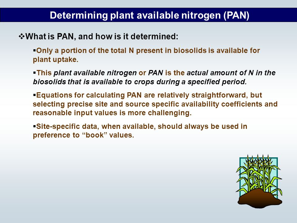 Determining plant available nitrogen (PAN)