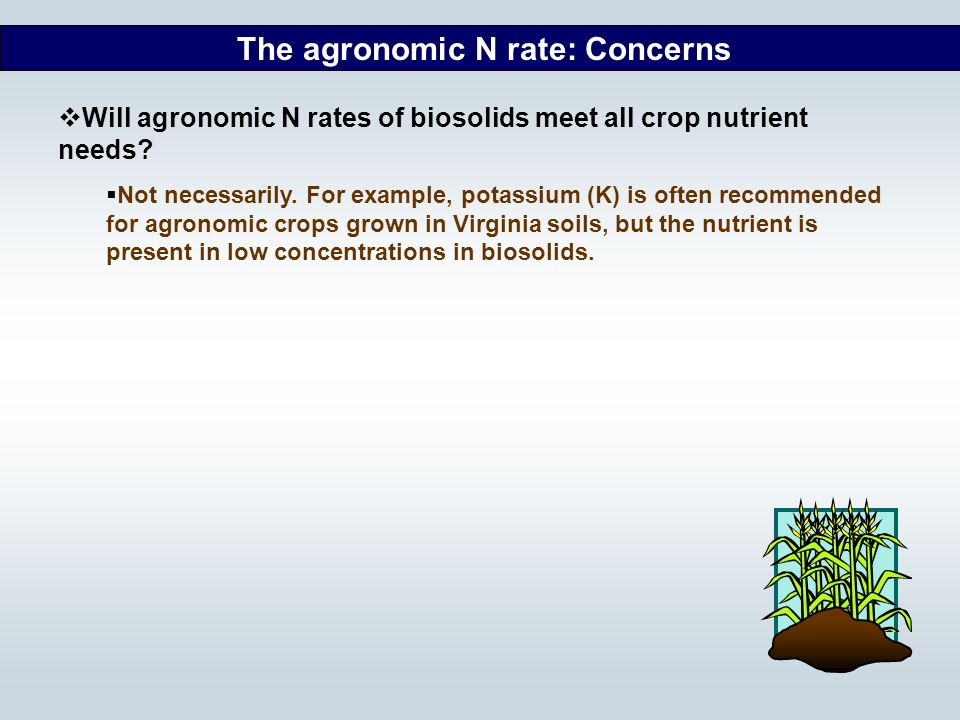 The agronomic N rate: Concerns