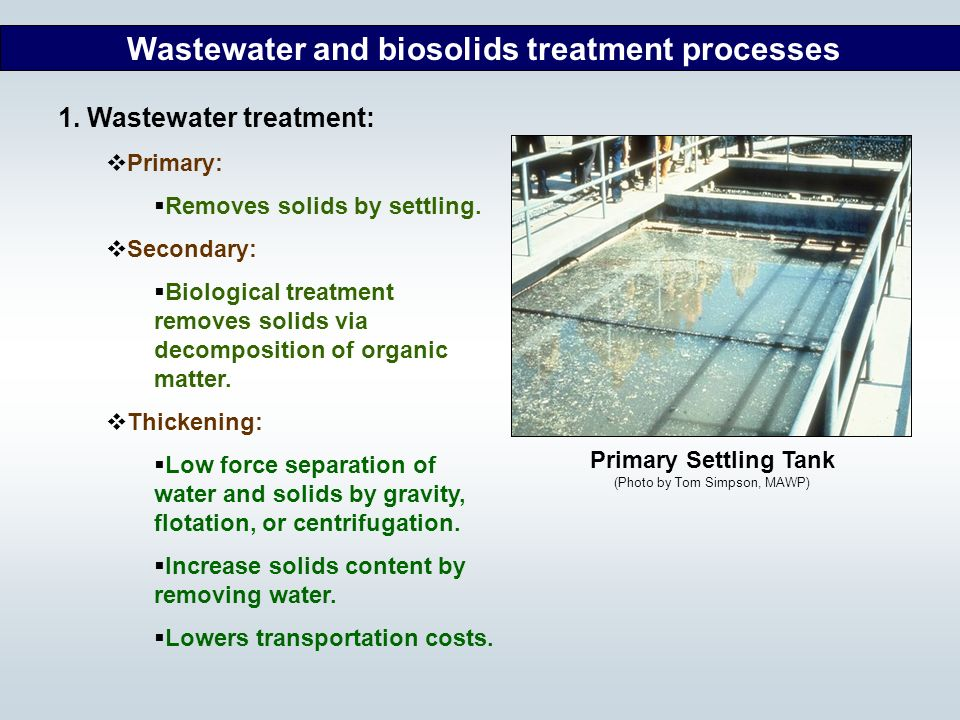 Wastewater and biosolids treatment processes