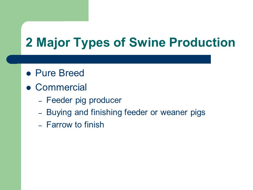 feeding and management of swine Swine viafield has provided the nutrition your pigs need in all phases of swine   initiative to offer collaborative insights and management information to swine.