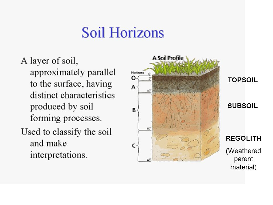 Biosphere soils soil profiles what is a soil what does for Soil profile video