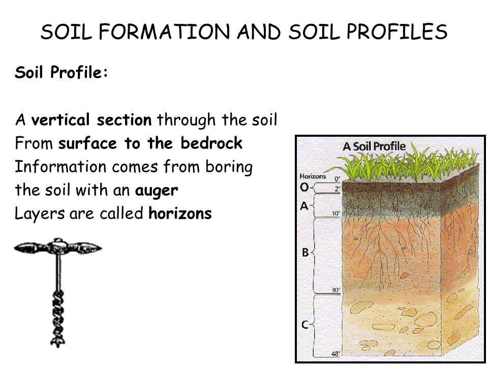 Biosphere soils soil profiles what is a soil what does for Origin and formation of soil