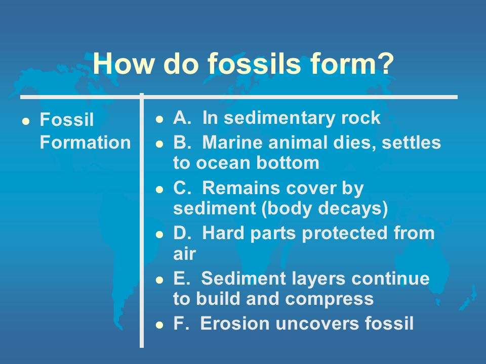 How do we know that there was life millions of years ago?? - ppt ...