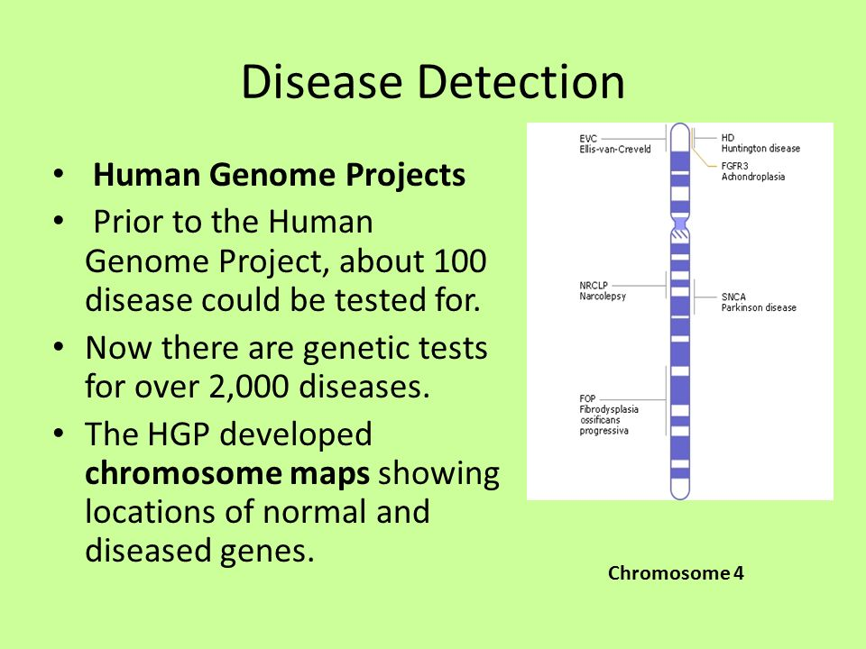 a history and the development of the human genome project A view from susan young rojahn a decade of advances since the human genome project despite breakthroughs in technology and medicine, there's still a lot of work ahead for understanding and using the human genome.