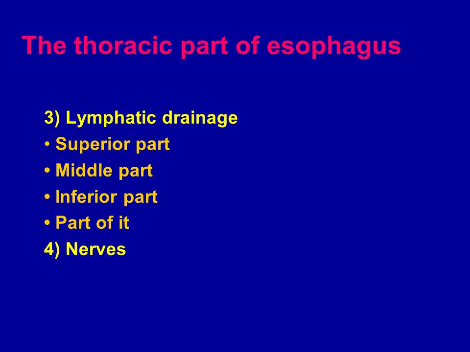 The thoracic part of esophagus