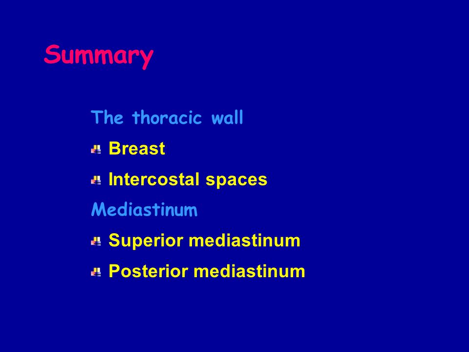 Summary The thoracic wall Breast Intercostal spaces Mediastinum