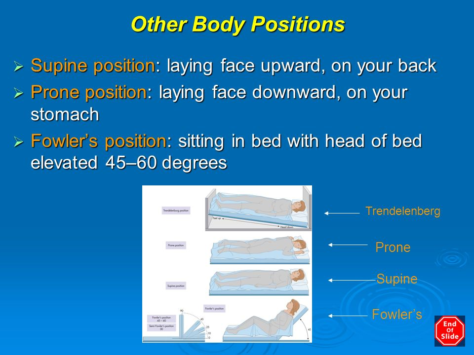 Anatomy, Physiology and Disease - ppt download