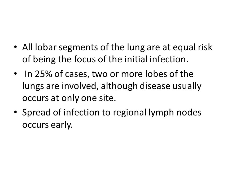 All lobar segments of the lung are at equal risk of being the focus of the initial infection.