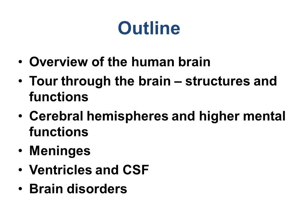 an overview of the human brain The brain is an organ that's made up of a large mass of nerve tissue that's protected within the skull it plays a role in just about every major body system the cerebrum is the largest part .