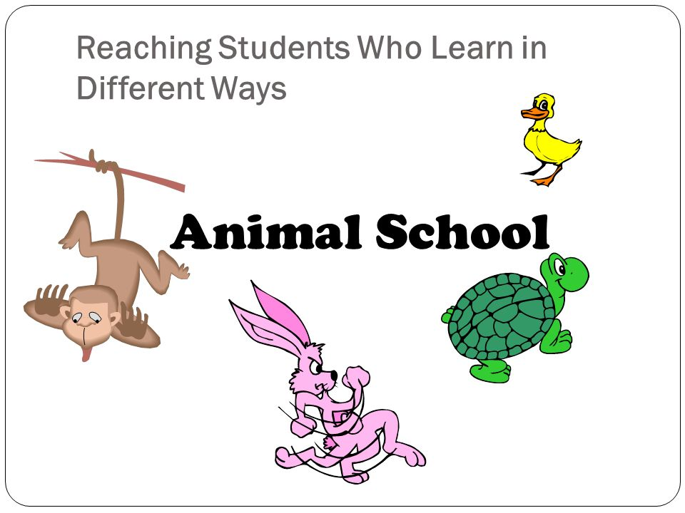 Reaching Students Who Learn in Different Ways