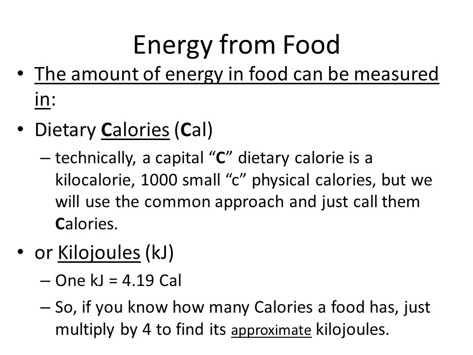 Measuring Energy from Food Essay Sample