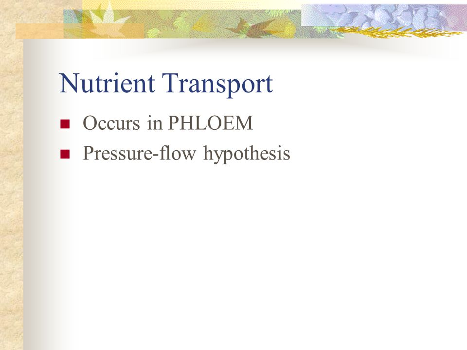 Nutrient Transport Occurs in PHLOEM Pressure-flow hypothesis