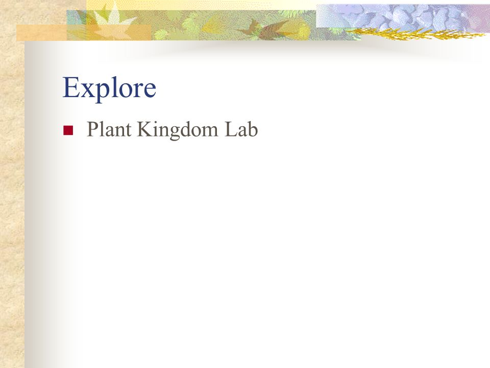 Explore Plant Kingdom Lab