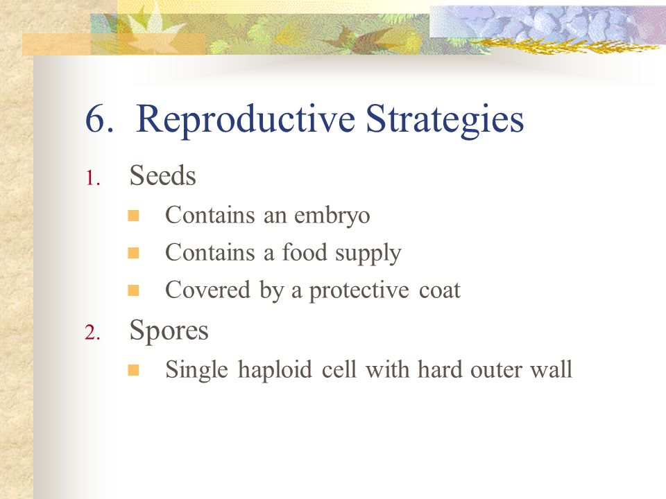 6. Reproductive Strategies