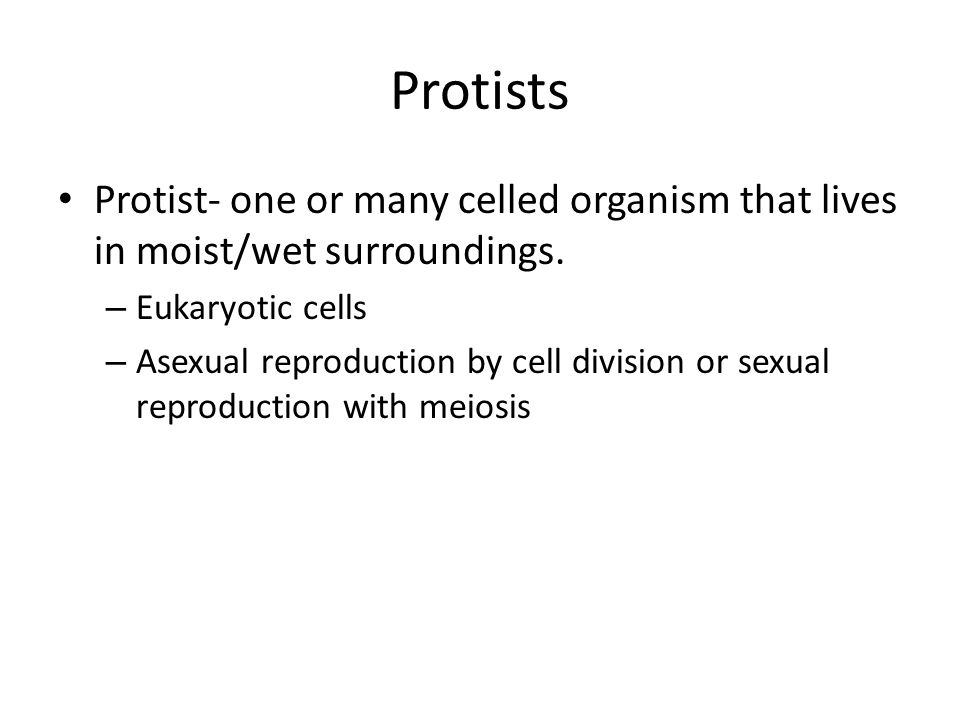 Protists Protist- one or many celled organism that lives in moist/wet surroundings. Eukaryotic cells.