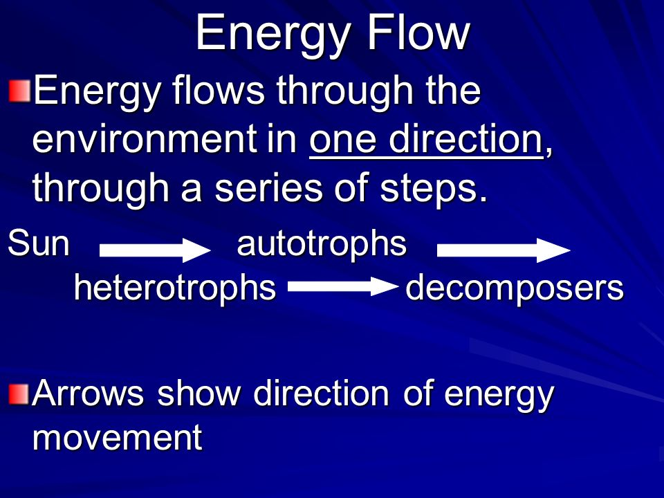 energy flow in the environment essay Ecosystem ecology studies the flow of energy and materials through organisms and the physical environment it seeks to understand the processes which govern the stocks of material and energy in ecosystems, and the flow of matter and energy through them.