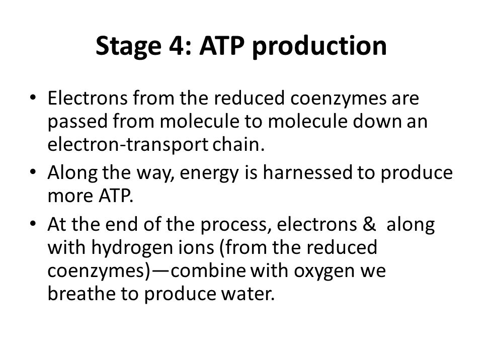 how to produce more atp