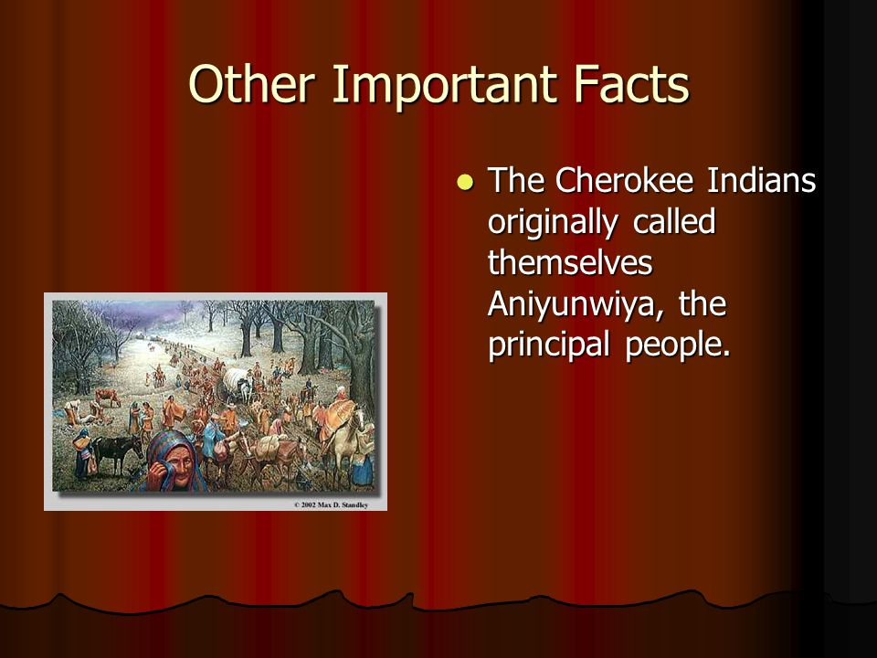 The Cherokee Tribe By Danielle Ppt Video Online Download