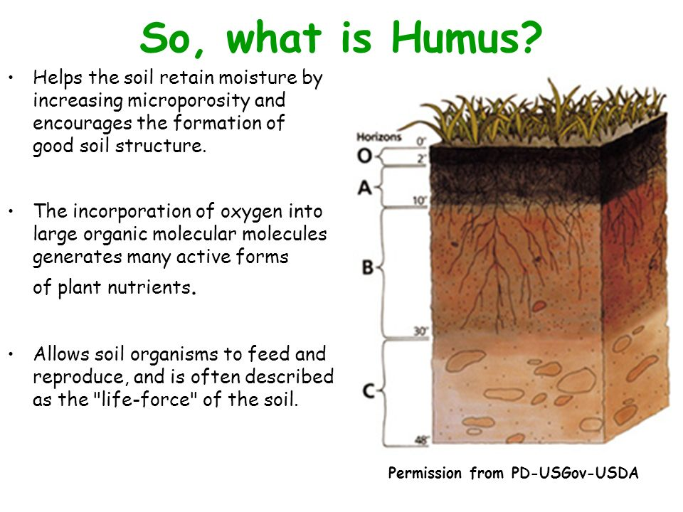An ecological perspective biol 346 ppt video online for Soil 5 letters