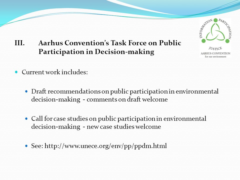 III. Aarhus Convention's Task Force on Public