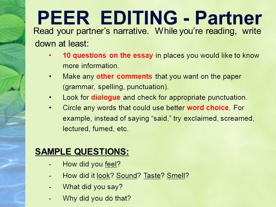 What Should an Essay Paper Look Like?