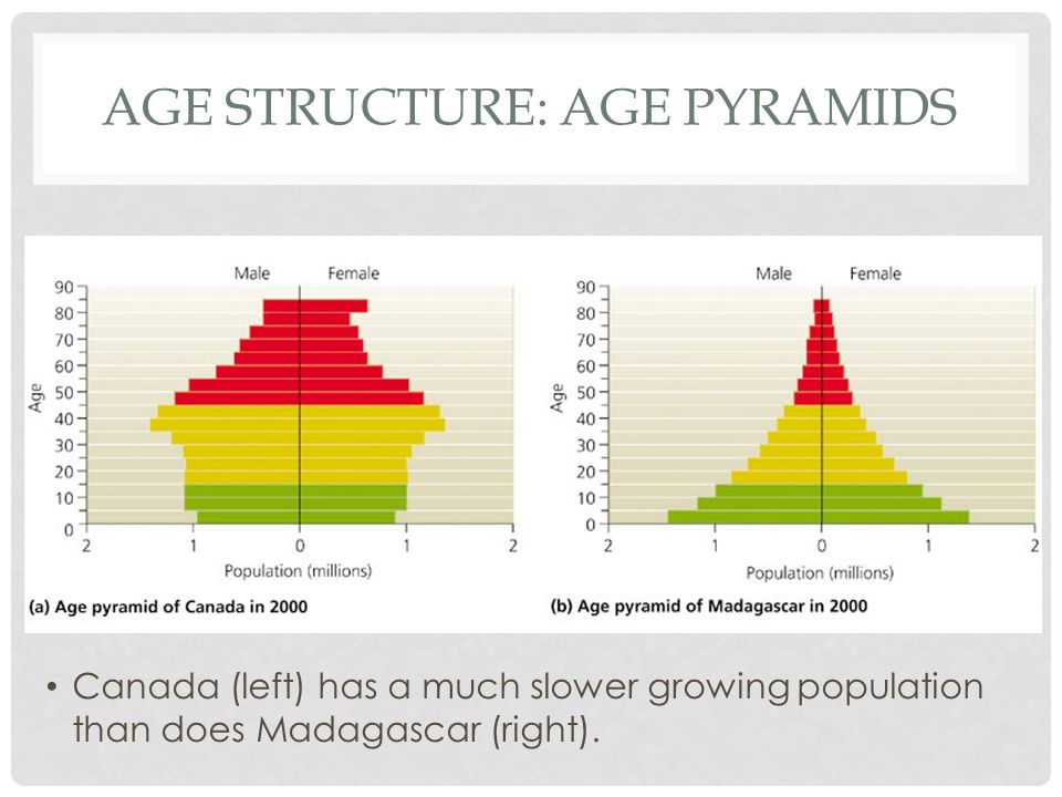 Age structure: Age pyramids
