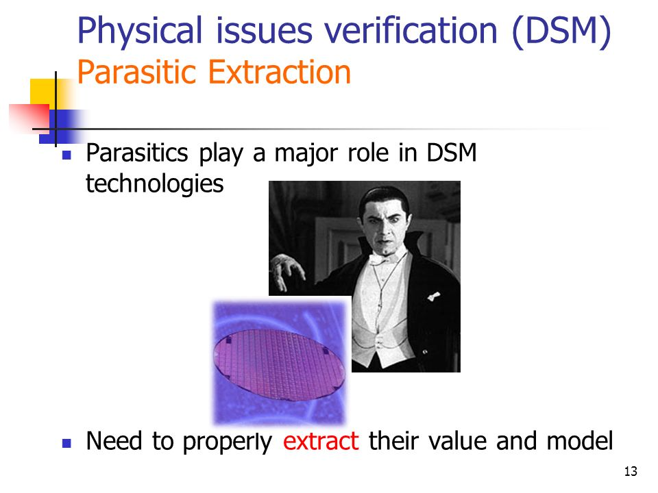 Physical issues verification (DSM) Parasitic Extraction